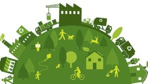 Add products that encourage sustainability