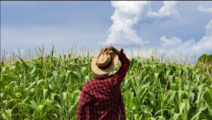 get loans as a young farmer